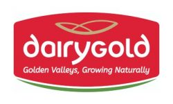 Dairygold Food Ingredients Mallow – New Dryer & Evaporator